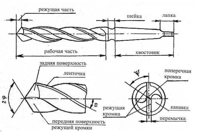 Фреза пазовая по дереву: назначение, разновидности инструмента